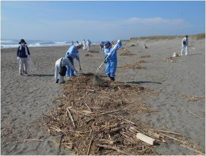 20210731isizakihama-beach_clean-3.jpg